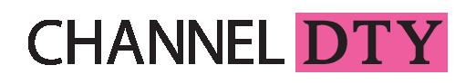 logo channeldty.com
